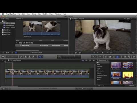 final cut pro x - http://www.fordeetv.com Video Tutorials For Beginners-Advanced Using Final Cut Pro X This video introduces you to the basics of Final Cut Pro X. Some of the ...