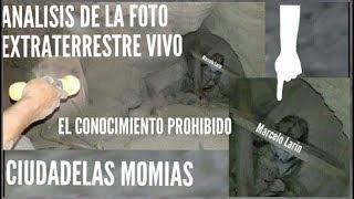 Extraterrestre, Perú, extraterrestre, OVNI, Momias extraterrestres en peru, Ovni, Momias, Extraterrestres, Nazca, Momias extraterrestres, Momia, Perú, ...