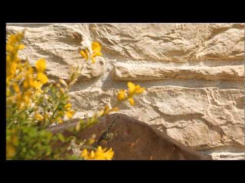 Dekorativni kamen | Studio Creative Art