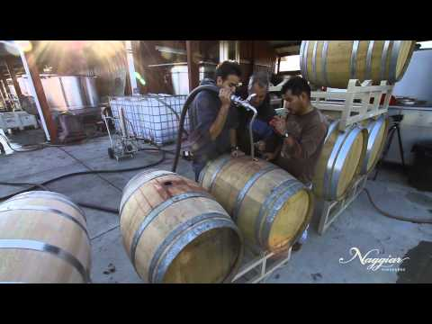 Vine To Wine, Winemaking At Naggiar Vineyards