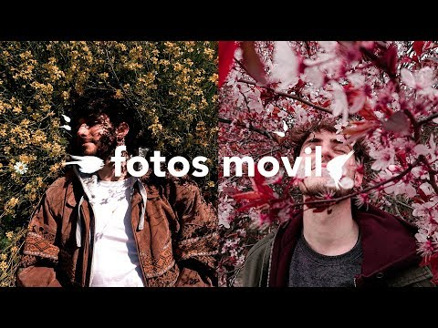 Fotos de amor - ¿SE PUEDEN HACER FOTOS BUENAS CON EL MOVIL?