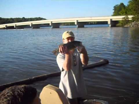 Green Lane Largemouth Bass 2014