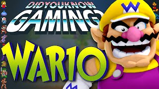 Wario - Did You Know Gaming? Feat. Jimmy Whetzel