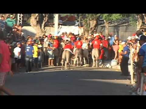 Corrida de Jegue 36º Festival do Jegue em Itabi/SE 2015