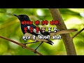 KOYAL SI TERI BOLI -  BETA -  HQ VIDEO LYRICS KARAOKE