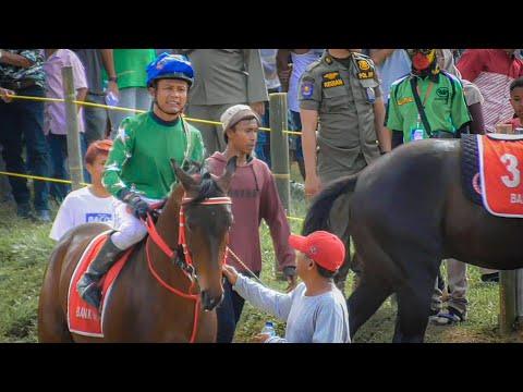 Hari Kedua, Pacuan Kuda Payakumbuh 2020