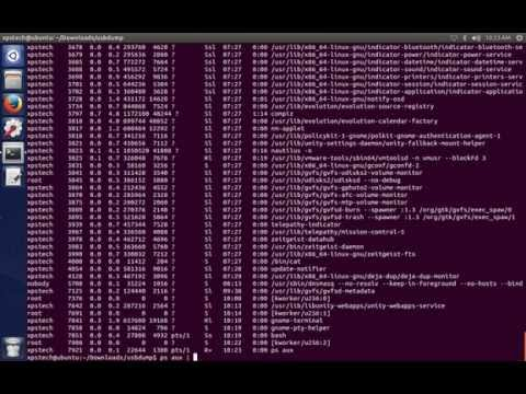 22 Essential  Linux Commands (su, PATH, PIPING, cat, ps, bg, jobs..)