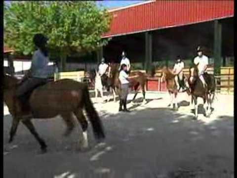 Presentación de la escuelaGranada Horse Center