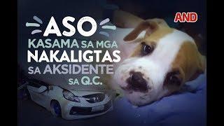 Isang aso ang kasama sa mga nakaligtas sa aksidenteng nangyari sa Quezon City nitong Martes, August 15. Subscribe to the...