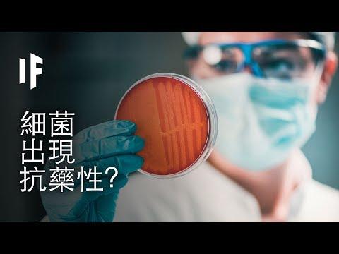 如果細菌出現了抗藥性 | 大膽科學