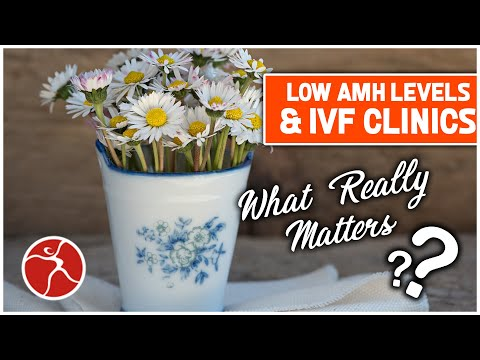 Low AMH Levels & IVF Clinics: What really matters