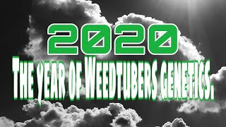2020 The Year of Weedtubers Genetics - Episode 5 by Mr. SparkzAlot
