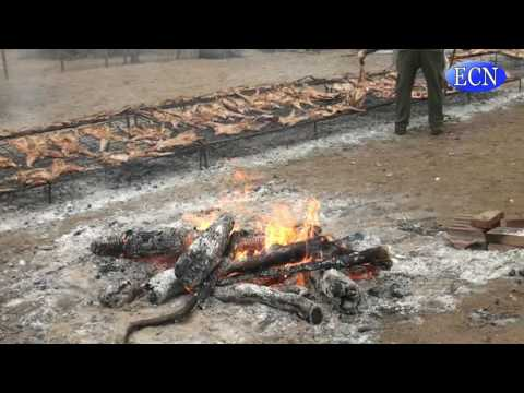 Presentan la 12º Fiesta Nacional de la Carreta y los 101 Chivos