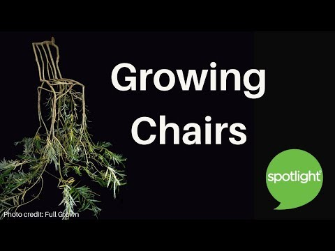 """""""Growing Chairs"""" - practice English with Spotlight"""