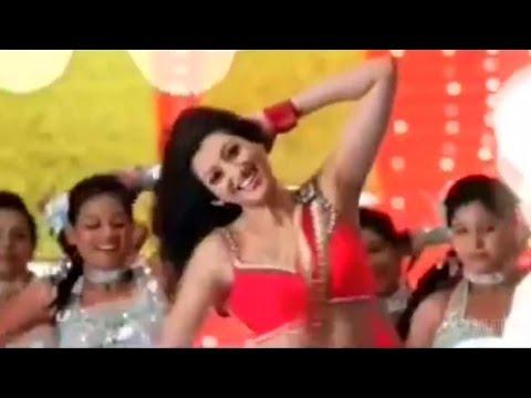Loukyam Movie Silly Sillyga Song Trailer || Gopichand, Rakulpreet Singh, Hamsa Nandini