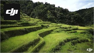 Banaue Philippines  city photos gallery : DJI S800 Flying Over Banaue Rice Terraces in Philippines