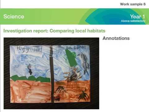 <p>Investigation report: Comparing local habitats</p>
