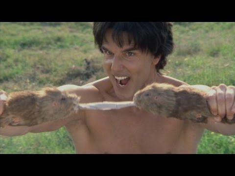 Best of Kung Pow! Enter the Fist - Thời lượng: 15:00.
