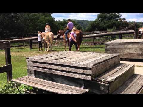 Horseback Riding Mt Vernon, Nj