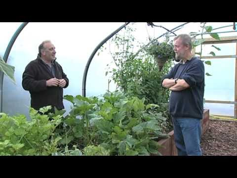 polytunnels - A Poly tunnel gives you the gift of gardening outdoors, indoors. Crops and flowers grow faster and stronger when sheltered from winds, warmed by the sun and ...