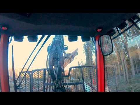 Skotare insida hytt,Forwarder inside cab wiew.