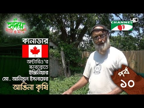Yard farming | EPISODE 10 | HD | Shykh Seraj | Channel i | আঙিনা কৃষি |