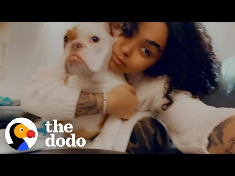 This Puppy's Mom Loves His Alter Ego | The Dodo Soulmates видео