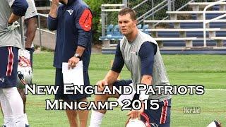 N.E. Patriots Minicamp Report : Brady & Garoppolo with QB Matt Flynn
