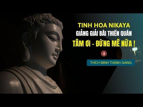 Tinh Hoa NIKAYA - Giảng Giải Bài Thiền Quán - Tâm Ơi  Đừng Mê Nữa ! 4