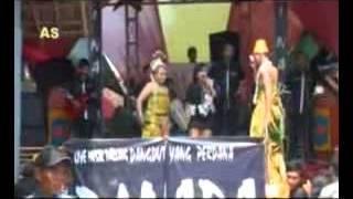 nining zahra PUNYA ABANG live show DI NADA