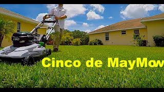 "1. Ego 21"" Self Propelled Mower Review 