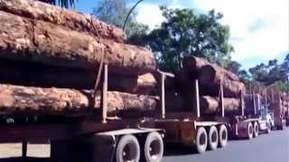 Nannup Australia  city photo : Nannup log trucks