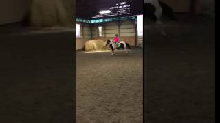 Video Lily and I jumping 3' download in MP3, 3GP, MP4, WEBM, AVI, FLV Februari 2017
