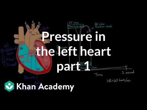 Healthcare and Medicine: Pressure Volume Loops