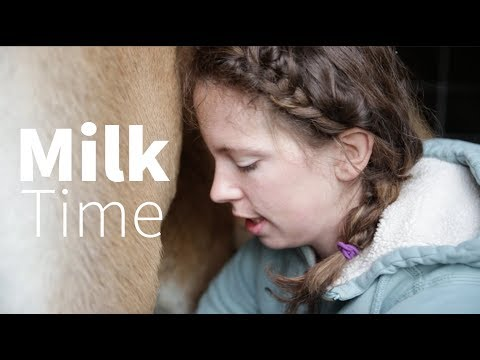 Video Milking The Family Cow... 1 Week in! download in MP3, 3GP, MP4, WEBM, AVI, FLV January 2017