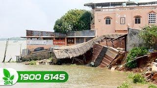 Chuyện của làng | Người dân khốn đốn vì sạt lở ở đồng bằng sông Cửu Long