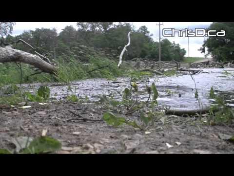 Winnipeg Storm Damage – June 29, 2014 – Winnipeg, Manitoba