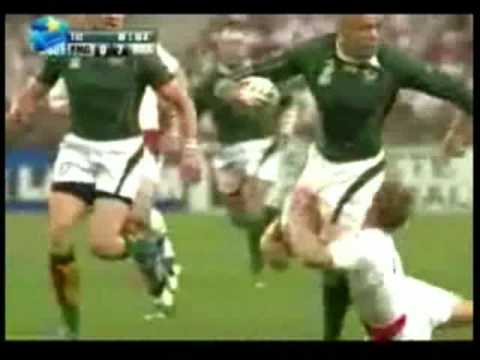 Cheetah vs. Springbok – Leon Schuster song
