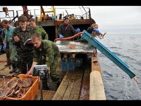 фильм про рыбалку браконьер