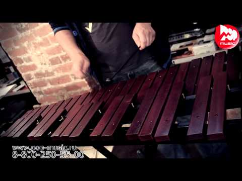 Stagg XYLO-SET 37 Remarque Xylophone Marron