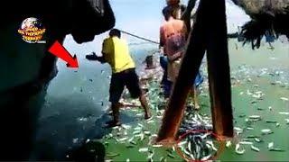 Video Fenomena Aneh, Ribuan ikan Laut Tiba² Loncat ke Darat!! Penyebabnya... WOW Langka. MP3, 3GP, MP4, WEBM, AVI, FLV Desember 2018