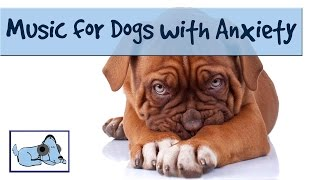 Music Therapy For Your Dog With Anxiety Problems