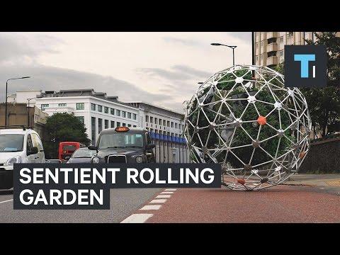 Sentient качающийся сад