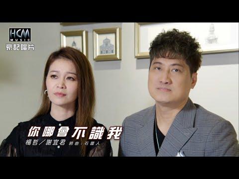 【MV首播】楊哲 vs 謝宜君 - 你哪會不識我 (官方完整版MV) HD 【三立八點檔『天之驕女 』片頭曲】