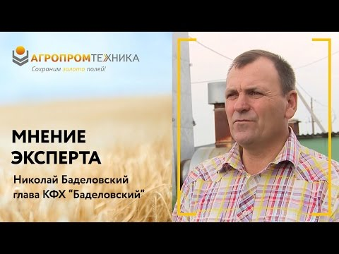 Мнение эксперта: зерносушилка для масличных культур