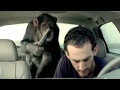 Download Lagu Funniest Trunk Monkey Commercials Mp3 Free