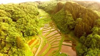 空撮 / 石畑の棚田