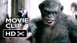 Nonton Dawn Of The Planet Of The Apes Movie Clip   Koba S Weapon  2014    Andy Serkis Movie Hd Film Subtitle Indonesia Streaming Movie Download