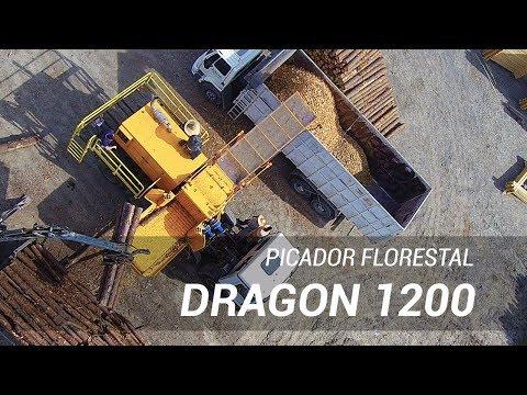 Picador Florestal - Dragon 1200 com esteira tracionadora de alimentação