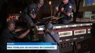Polícia apreende mais de meia tonelada de maconha em fundo falso de caminhão
